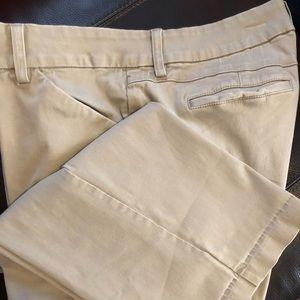 16W medium Lee Modern Series, curvy fit pants